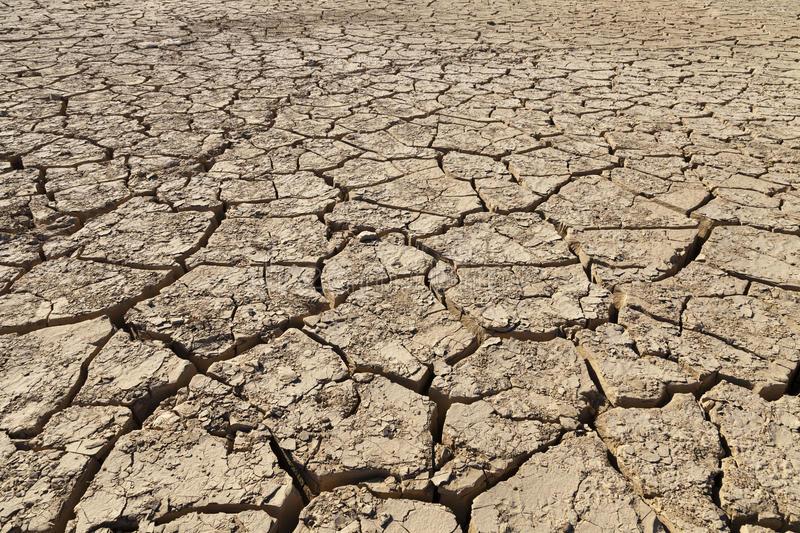 Desertification in Pakistan - Combating Desertification in Pakistan (Term Paper) - Forestrypedia