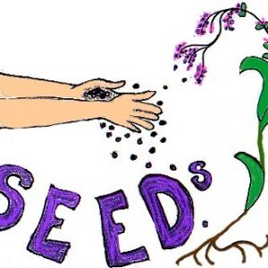 Seed Collection (Seminar) - Forestrypedia