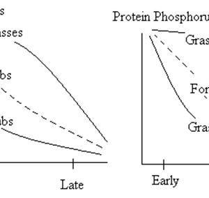 Range Nutrition - Forestrypedia