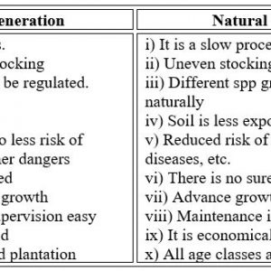 Artificial Regeneration - Forestrypedia