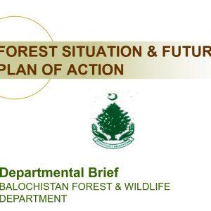 Balochistan Forest & Wildlife Department (Departmental Brief) (Updated)