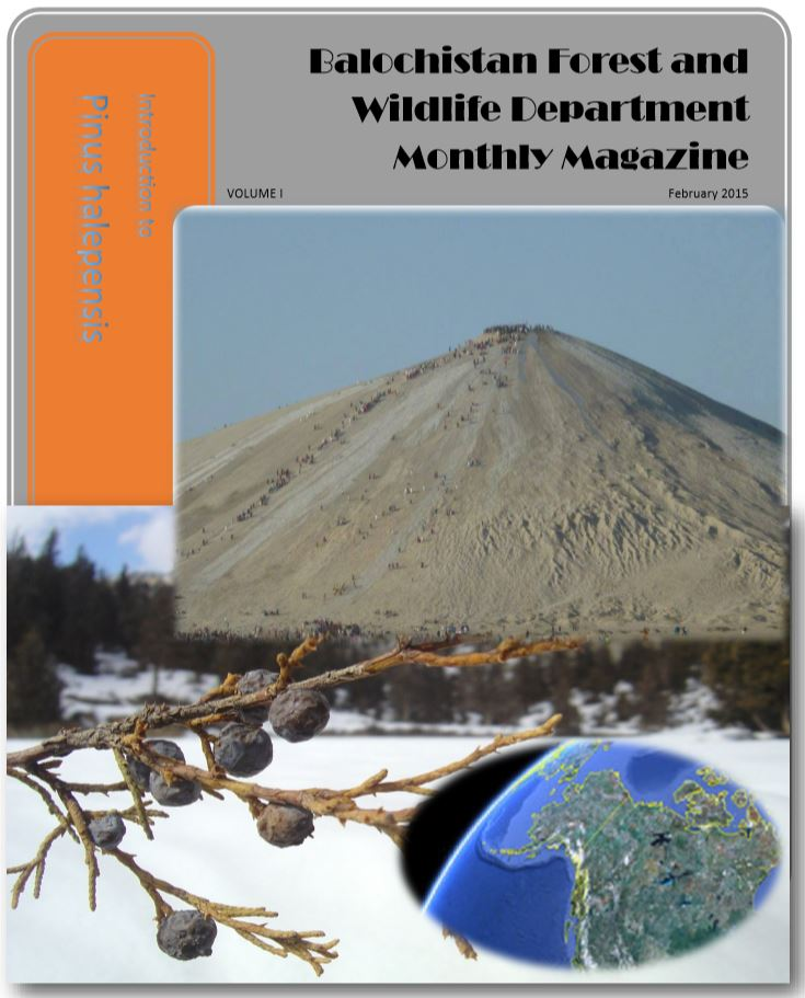 Balochistan Forest and Wildlife Department Monthly Magazine - February 2015