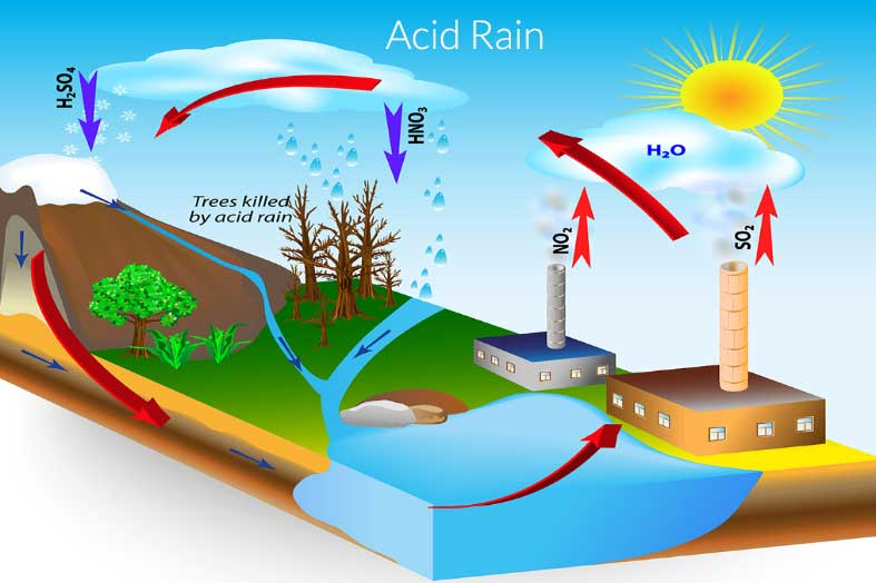 Acid Rain - Formation, Effects and Control Measure - Forestrypedia