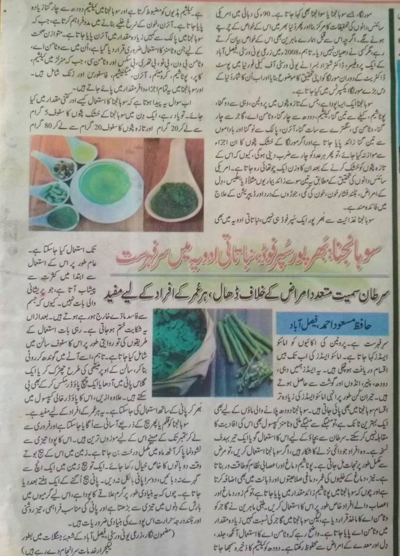 Moringa (Sohanjna) - The Superfood (Urdu Featured Article) - forestrypedia.com